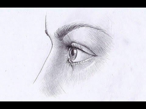 Глаза нарисовать профиль