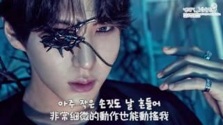 [繁中字] VIXX(빅스) - 나비 효과(Butterfly Effect)(蝴蝶效應)(韓中字幕)(1080P)