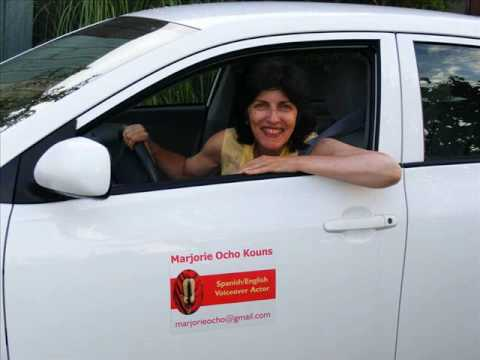 Customer testimonial for vistaprints car door magnets