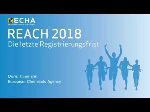 Drawing REACH registration – stepwise approach to chemical safety in Europe