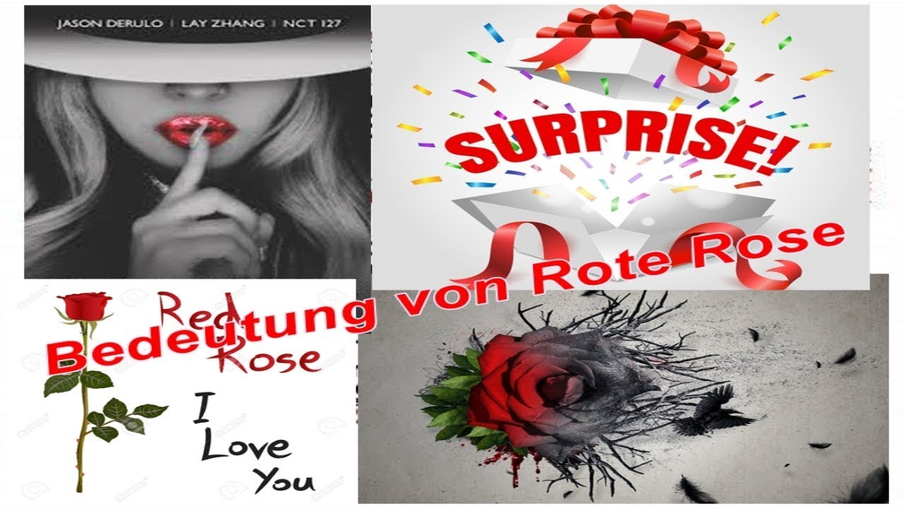Bedeutung von rote Rose - YouTube