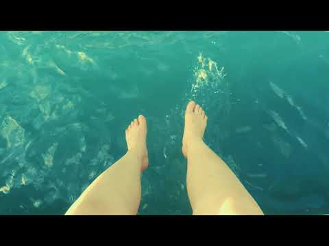 Travelvideo Curacao GoPro