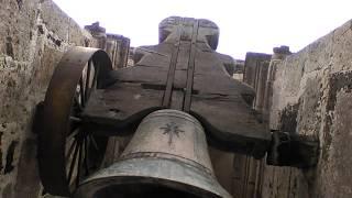 Después de 100 años esquileo en la Basílica de San Felipe Neri