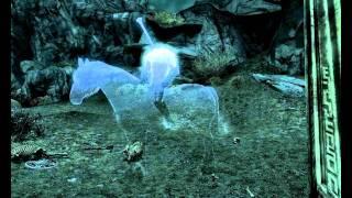 The Elder Scrolls V: Skyrim - Всадник без головы(Совершил быстрое перемещение на Привал Хамвира. Там увидел этого всадника и скелеты везде лазили. Скелетов..., 2011-11-23T15:00:09.000Z)