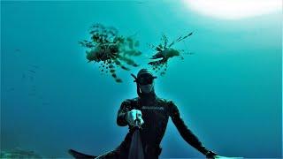 Фридайвинг в Египте Шарм Эль Шейх Дахаб Блю Холл Рас Мохаммед Красное море