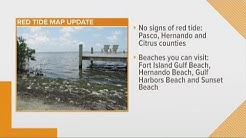 Despite red tide threat, FWC says some beaches are safe to swim