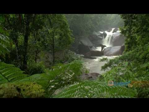 Holiday Travel Video Guide for Cairns, Queensland Australia