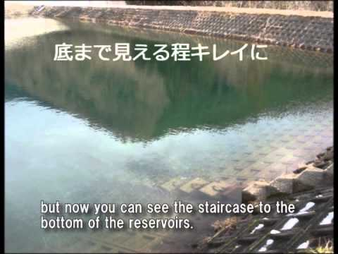 Water Purification of the Reservoir