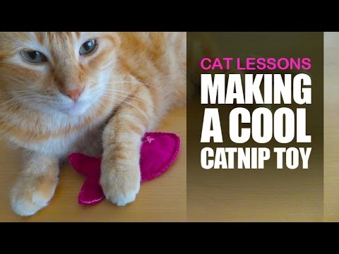 how to make catnip toys