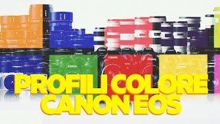 I Profili Colore per i Videomaker su Canon EOS