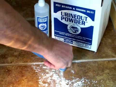 clean dog urine from tile video 2