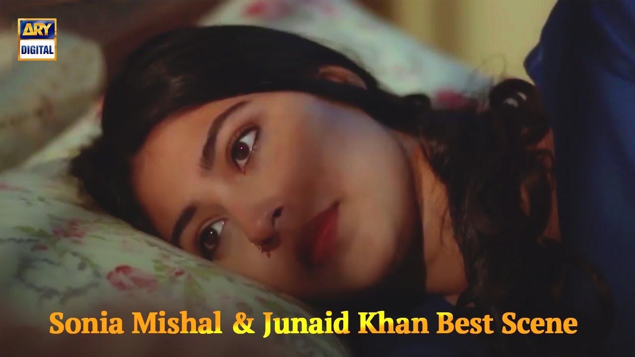 Husband & Wife Best Moments - Sonia Mishal - Junaid Khan - ARY Digital Drama