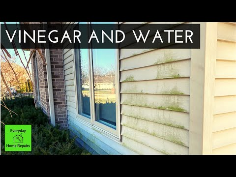 How To Clean Green Algae On Vinyl Siding No Pressure Washer Youtube