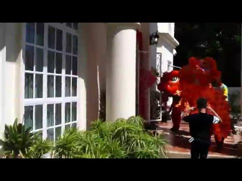 Amazing Lion Dance part 3