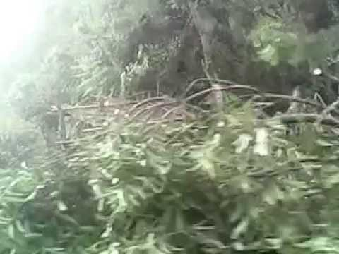 5 day after typhoon glenda land fall in atimona quezon
