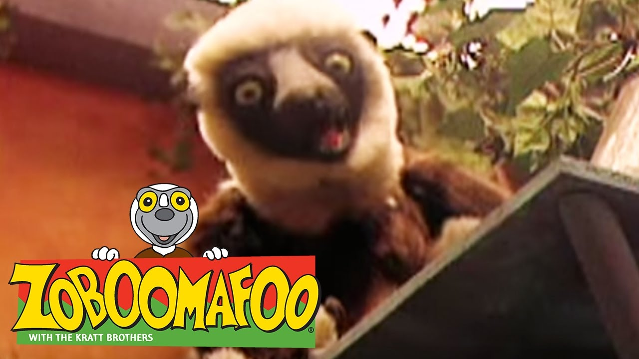 🐒 Zoboomafoo 🐒 128 | Horses Full Episode | Kids TV Shows