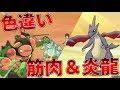 【ポケモンUSUM】漆黒の炎!色違いの相棒たち【ゆっくり実況】