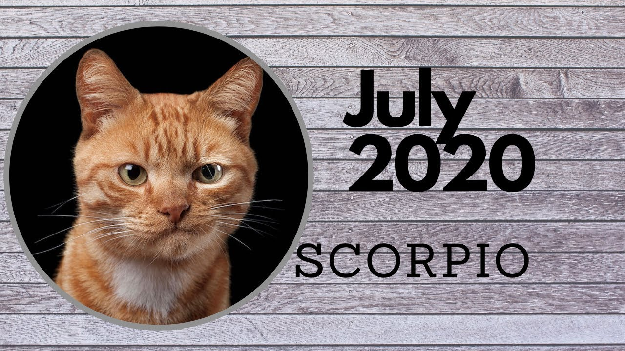 SCORPIO JULY - Heartbroken but still moving forward