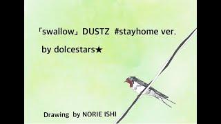 DUSTZ - Swallow