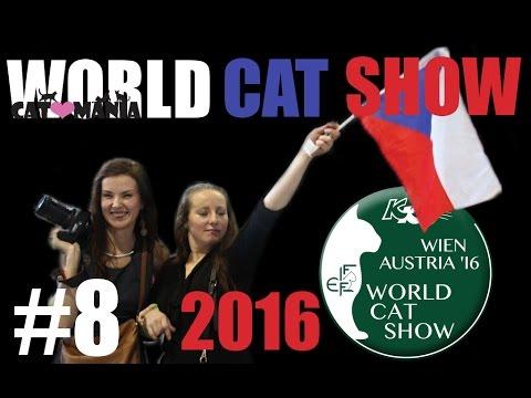 Světová výstava koček 2016 ● World Cat Show Vienna AT // CAT-MANIA #8