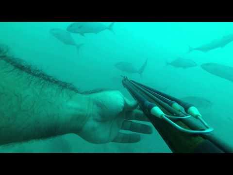 Powerhead Spearfishing .357