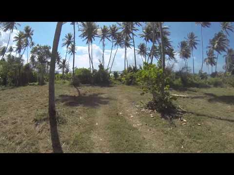 140524 Tobago - No Man's Land, Plantations, Scarborough, Bacolet