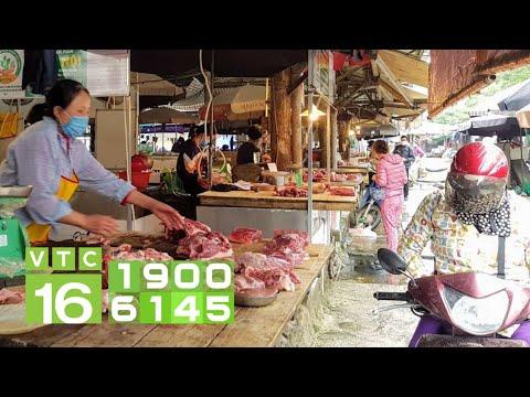 Nhập khẩu ồ ạt thịt lợn: Giá lợn hơi sẽ giảm?   VTC16