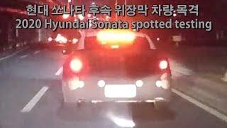 현대 쏘나타 후속 위장막 차량 (DN8) 목격 2020…