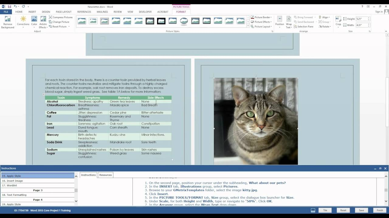 Gmetrix Practice Test For Microsoft Word 2013 Project 1