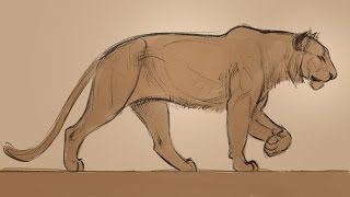 Animation - Drawing Animals with Aaron Blaise promo.