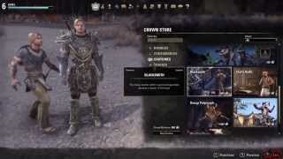 SHOWING OFF THE GAMEPLAY! - Elder Scrolls Online: Tamriel Unlimited - (PC Gameplay)