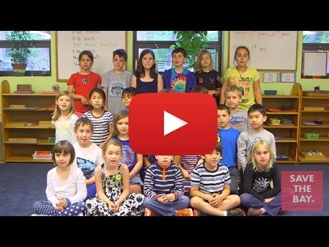 This Bay is Our Bay - Performed by South County Montessori School