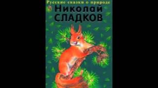 Сладков Николай Иванович – Всему своё время