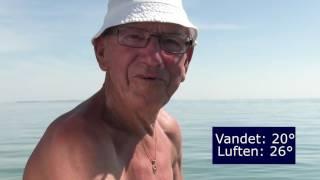 Hou Strandcamping | Østjylland