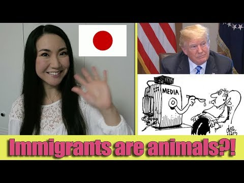 Japanese Perspective - TRUMP v.s MSM (Siding with MS-13) - Society Structure Fail