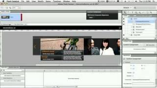 Adobe Flash Catalyst CS5 - 5 лучших функций