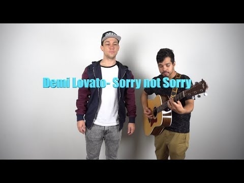 Demi Lovato - Sorry Not Sorry - Acoustic Cover
