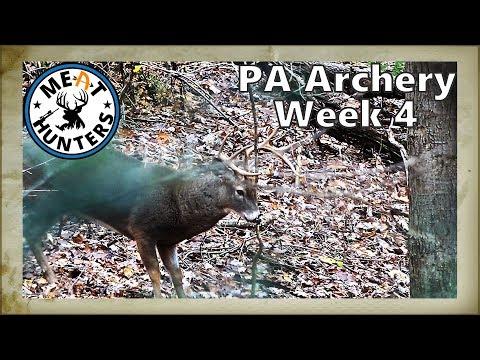 The Rut Is On In PA | PA Archery Week 4