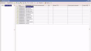 Сведения о товарах и услугах в 1С:Упрощенка (11/39)