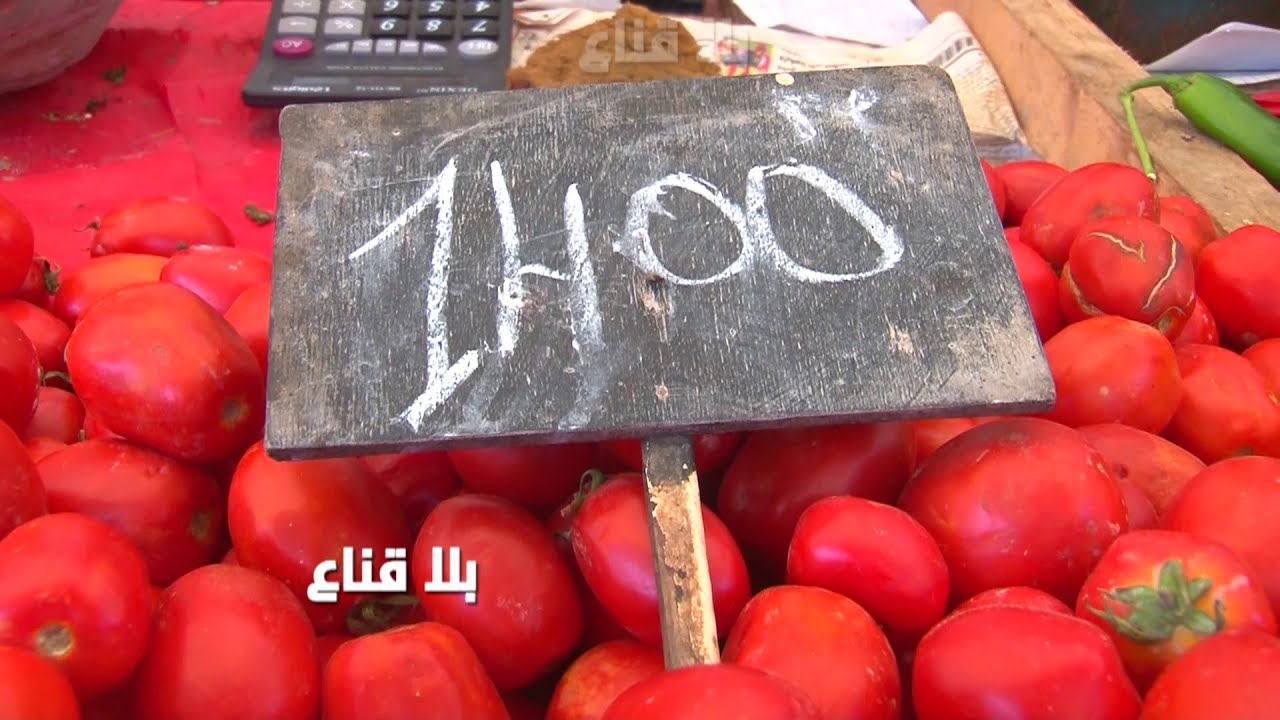 Download bila kinaa   !! الطماطم بمائة وستين فرنك الكيلو من الفلاح وتوصل للمواطن بدينار ونصف..حقيقة مررة
