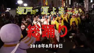 よさこい 坂戸・夏よさこい2018  総踊り(最終日) 2018年8月19日