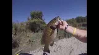 Pittock Smallmouth
