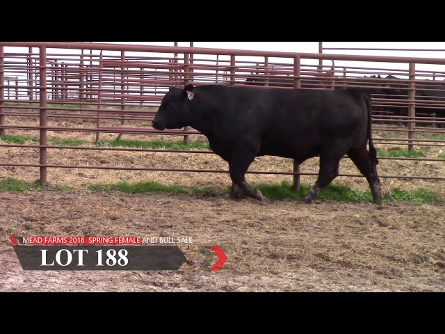 Mead Farms Lot 188