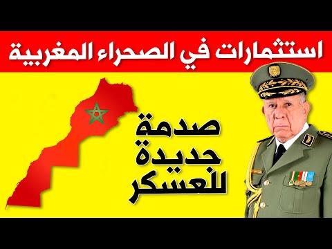 Darija News x Maroc اعتراف بولونيا بمغربية الصحراء