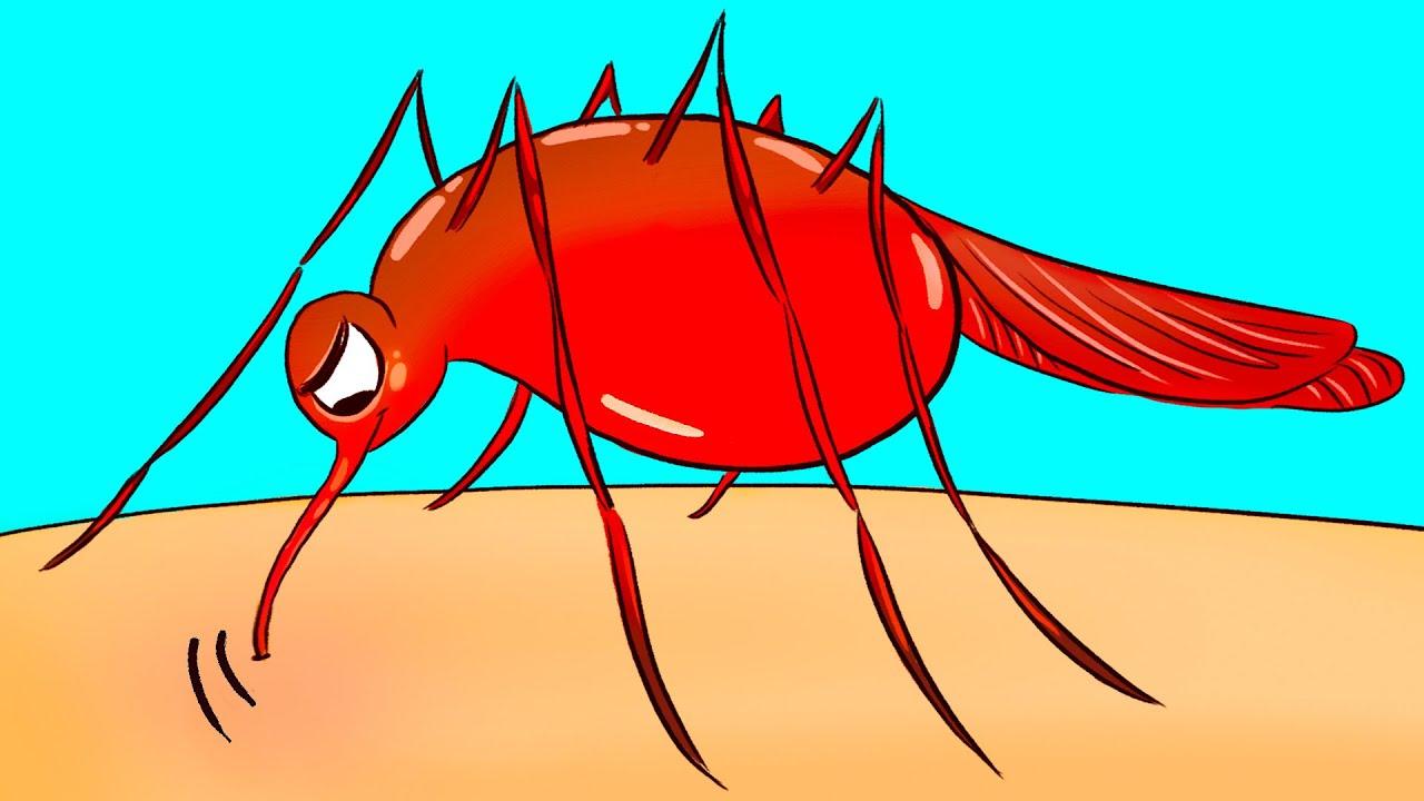 إن كان البعوض يلسعك أكثر من غيرك، فإليك السبب