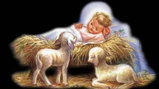 Đêm Nay Con Chúa Giáng Sinh