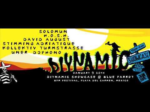 Adriatique Live @ Diynamic Showcase, Blue Parrot (BPM Festival 2014, Playa del Carmen)