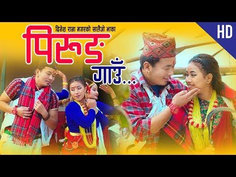 Pirung Gaun |  New Salaijo Song 2018/2075 | Sharmila Gurung | Dinesh Rana  | Ft. Aarusi | Nir Ale