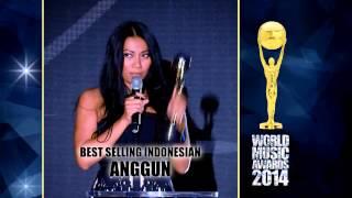 World Music Awards 2014 - The Anggun parts