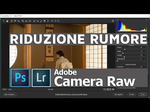 Adobe Camera Raw Ridurre Il Rumore Nelle Foto